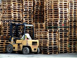 pallets stacked by a safe forklift driver