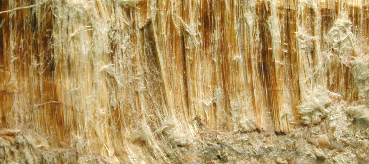 The Basics of Asbestos and its Danger to Human Health