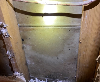 mold growth on the inside of a wall